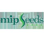 Mip Seeds