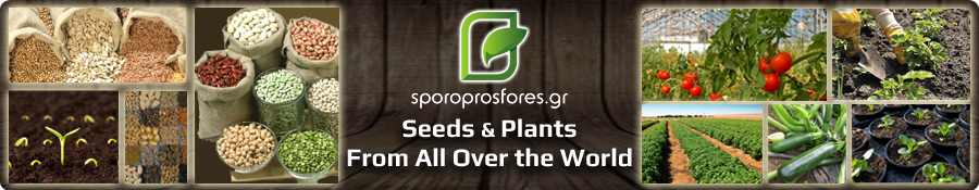Seeds & Plants of the world