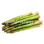Asparagus (rhizomes)