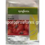 Tomatoes Bobcat F1 (determinants)