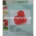 Tomatoes Troy F1 (Lycopersicom esculentum Mill)