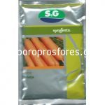 Carrots Natalija F1