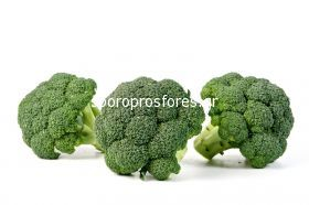 Broccoli Triton F1