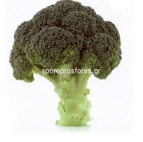 Broccoli Naxos