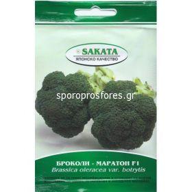 Broccoli Marathon (Marathon F1)