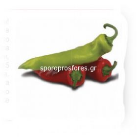 Pepper Ekstaza