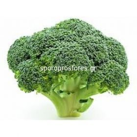 Broccoli Parthenon (Parthenon F1)