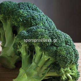 Broccoli Besty F1