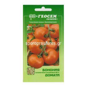 Tomatoes Bononia