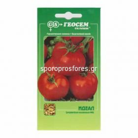 Tomatoes Ideal